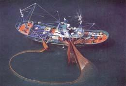 20070103174746-barco.jpg