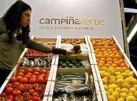 20070114002413-frutas.jpg