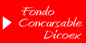 20080820201535-fondo-concursable-2009.jpg