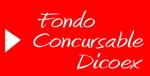 20081031020329-fondo-concursable.jpg