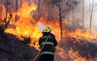 20100124004442-incendio.jpg