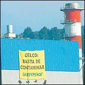 Activistas de Greenpeace se toman Planta Nueva Aldea de Celco