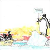 20061022185313-pinguinos.jpg