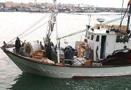 20070103174242-buque.jpg