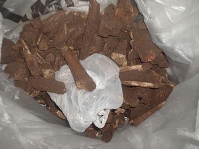 Archivera judicial ocultó restos hallados en ex bactereológico del Ejército