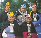Asamblea Mapuche de Izquierda se reunió en Temuko