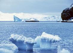 Cancilleres de Chile y Argentina abordarán tema antártico en Santiago