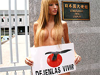 Protestan frente a embajada de Japón por matanza de ballenas