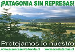 Carta abierta al Presidente de la República de Chile sobre el mega proyecto llamado Hidroaysén