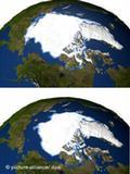 El polo norte se derrite velozmente.